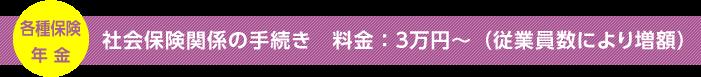 社会保険関係の手続き、料金:3万円~(従業員数により増額)
